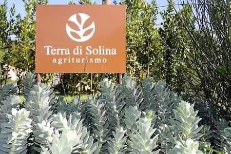 Acqua Dolce Rooms e Terra di Solina Agriturismo - Capestrano - Bed & Breakfast
