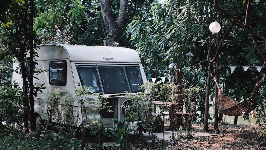 CAMP OUT Caravan Type