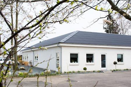 Roomy in Odense