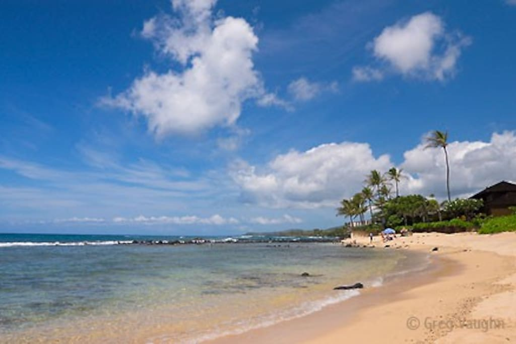 Reef-protected Baby Beach within a 1-minute walk from your front door.