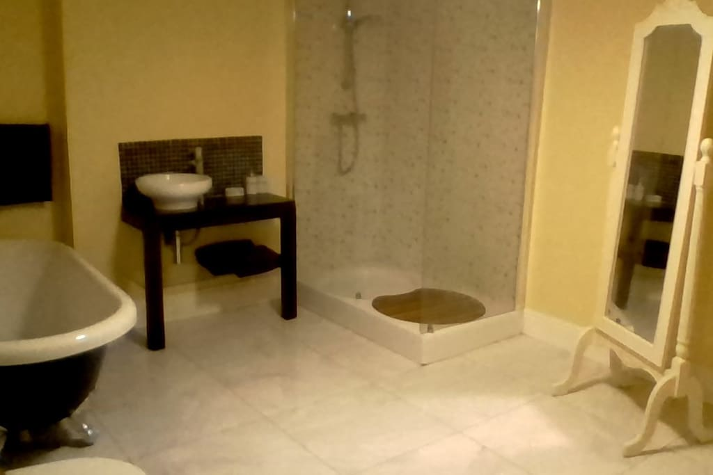 Large bathroom with free standing tub and shower