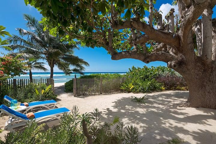 Hawksbill Beachfront villa on turtle nesting beach