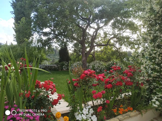 Relaxing  Olga's house on the hill (2-4 persons)