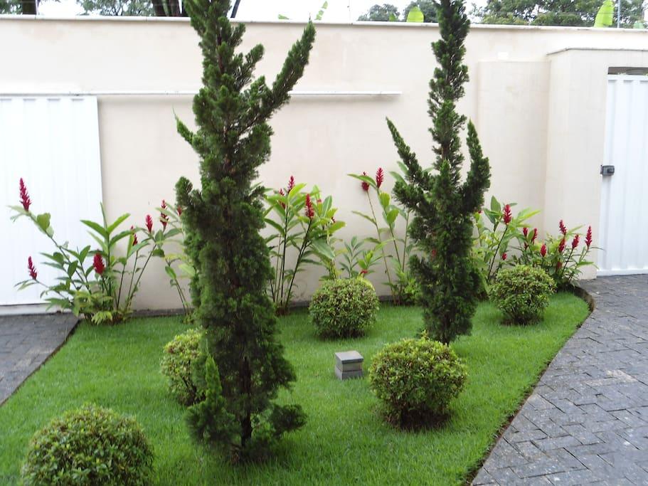 Jardim da entrada.