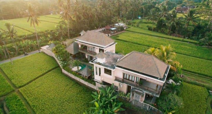 Luxury Tropical Ubud private villas