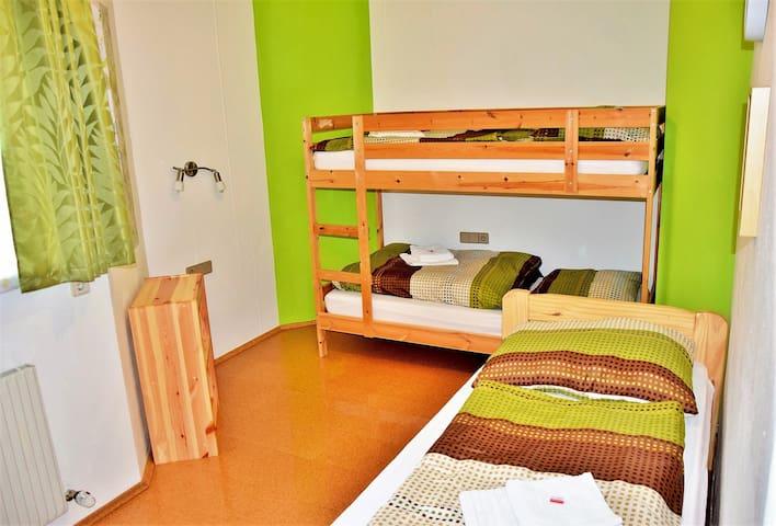 Ferienwohnung Wildschoenau Apartment fuer 6 - 8 Personen mit eigenem Garten