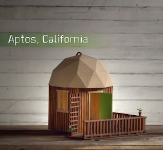This is the Birdhouse that was made of the Mushroom Dome. Cute, huh?