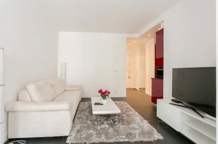 Champs Elysees street apartment