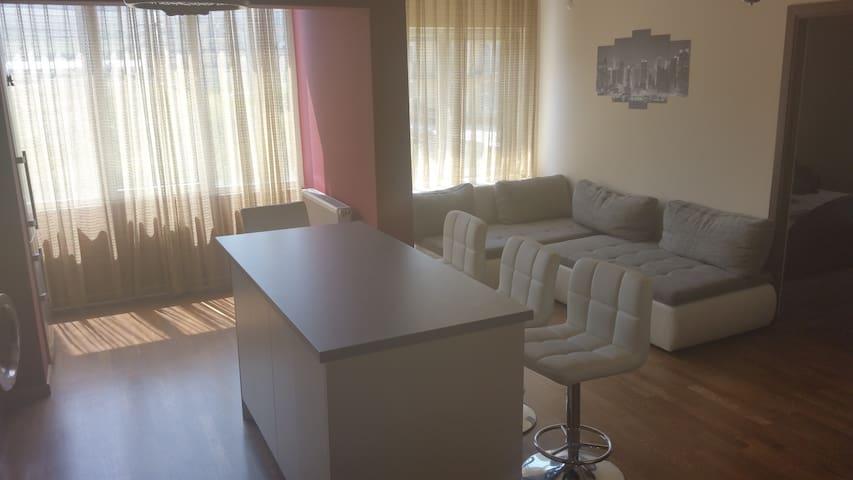 Cozy apartment for Untold - Florești