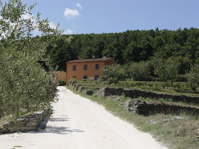 """Il Palasso"",Tuscany Country  House - Buti - Rumah"