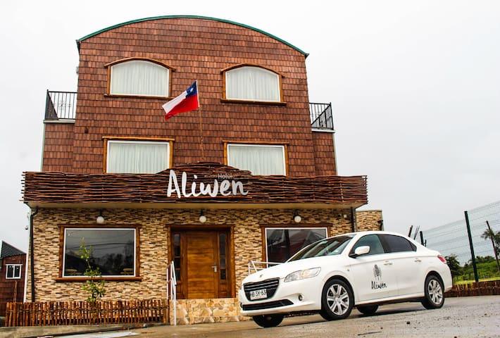 Hotel Aliwen/Habitación Doble Estándar