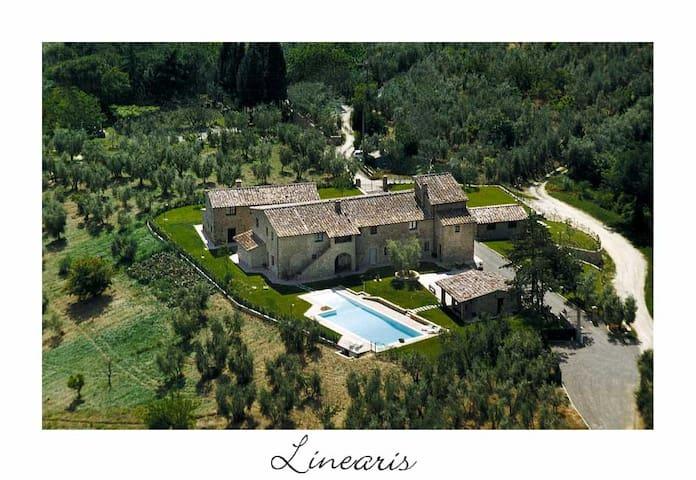 Linearis Apt F (4+2) - Barberino Val d'Elsa - Apartment
