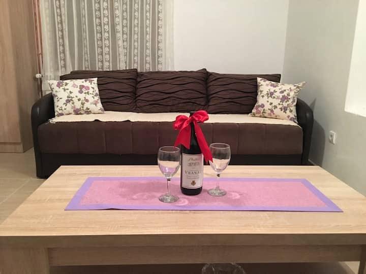 Apartments Popovic-violet