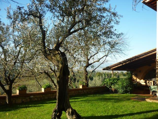 Casa Vacanze a Villa il Mandorlo - San Martino alla Palma