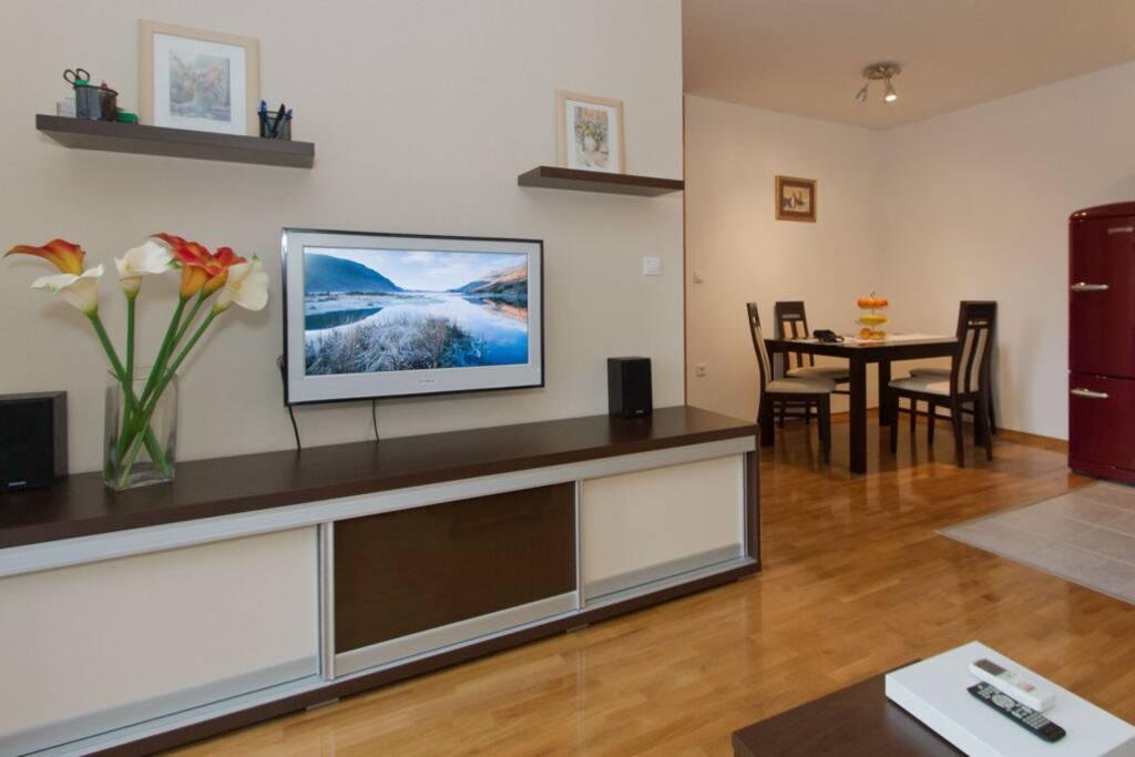 Living room with brand new plasma TV