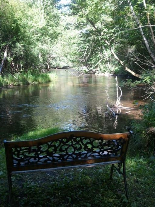 7+ picturesque acres & beautiful Crystal River frontage--relax, fish, wildlife, enjoy!