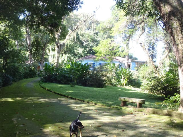 Dream House at Jardim Botanico