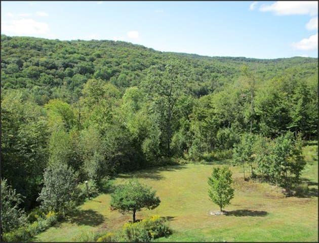 Room in Beautiful Rural Apartment  - Windham - Daire