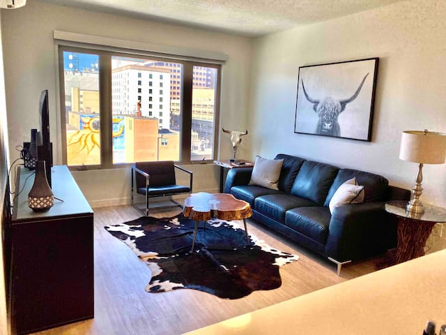 New Downtown Luxury Apartment