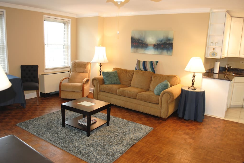 Open, large living room with sleeper sofa