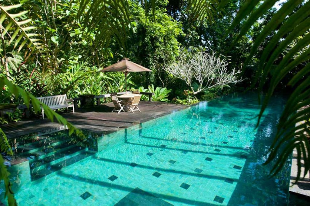 access toone of the most beautiful pools in Ubud. A 25m lap pool set amidst a lush garden