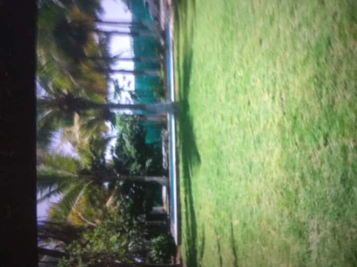 Natural landscaping, polite staff, lawn garden.