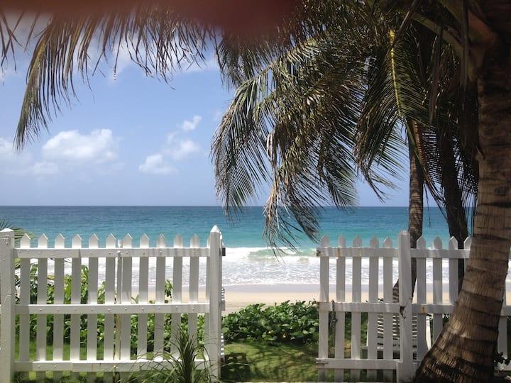 Villa sur la plage avec sa piscine, proche de tout