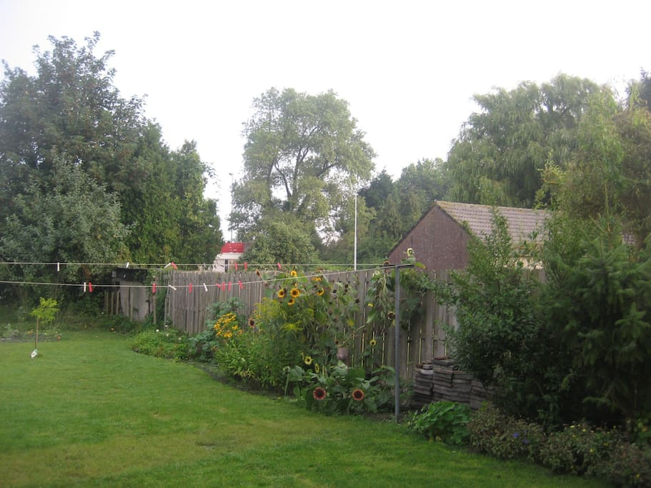 tuin in september
