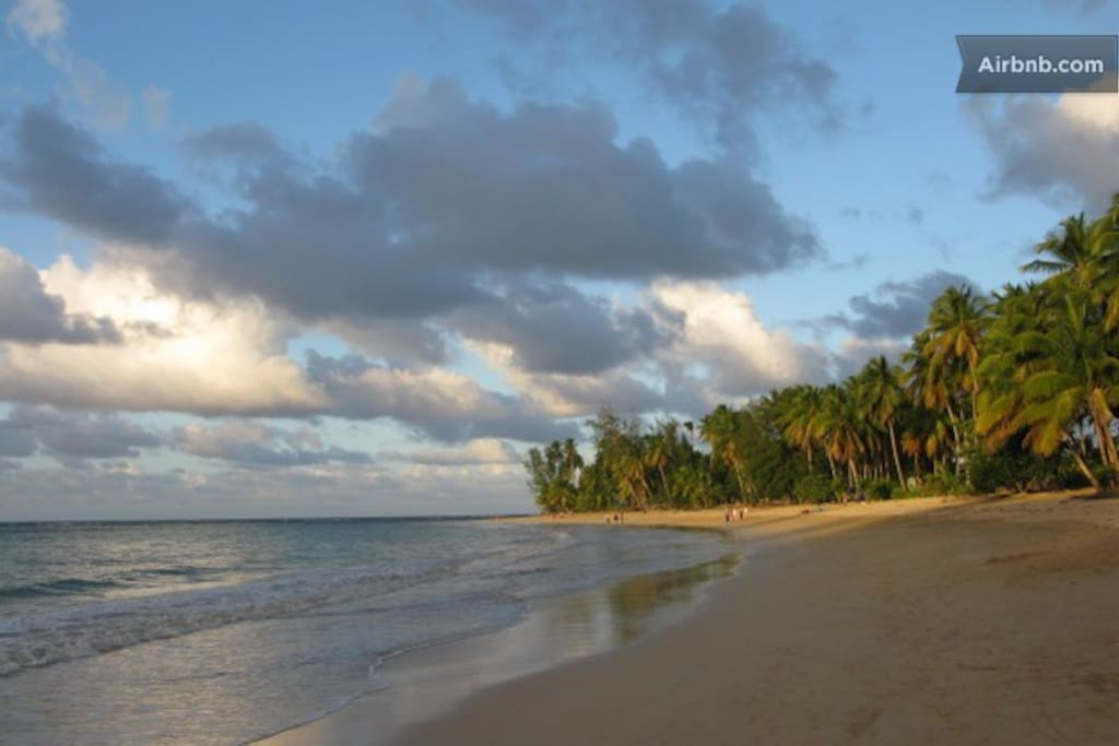 Playa  Las Ballenas - view from our section of the beach