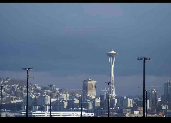 Condo - Space Needle/Water/DT View & 10 Mins to DT