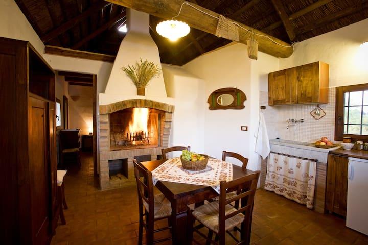 Ampio soggiorno con cucina e camino (La Romagnola)