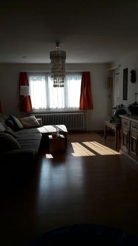 Wohnung im Zentrum von Heerbrugg - Heerbrugg