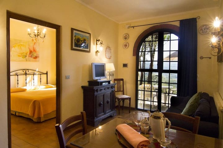 Romantic Apartment in the heart of Chianti Area