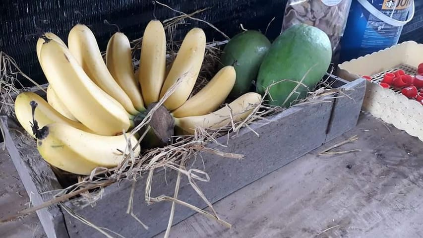 Pranporpiang Organic Lifestyle and Farm