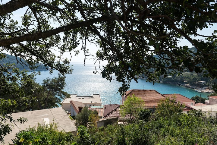 Sunny studio on Mljet island 1