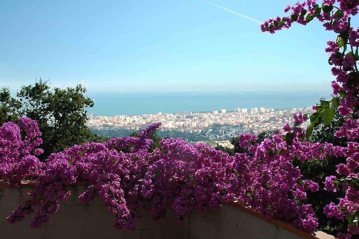 Suite 2 rooms seasighting terrace - Città Sant'Angelo - ที่พักพร้อมอาหารเช้า