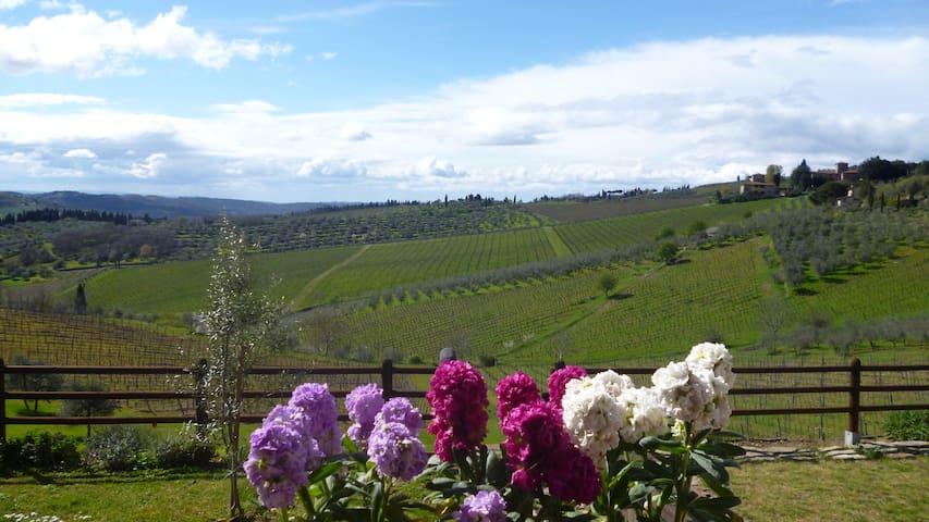 """""""Immersi"""" nella campagna Toscana - Panzano In Chianti"""