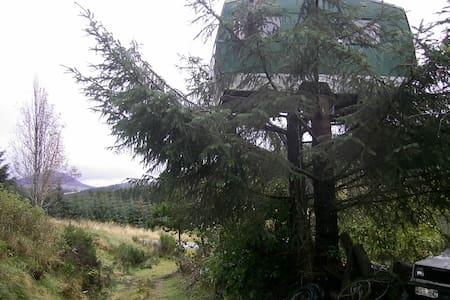 Bogancloch Treehouse - Rhynie - ツリーハウス