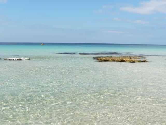 Tranquilidad en la naturaleza - San Jaime Mediterráneo - Bed & Breakfast
