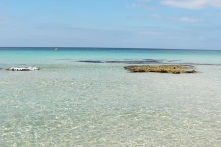 Tranquilidad en la naturaleza - San Jaime Mediterráneo