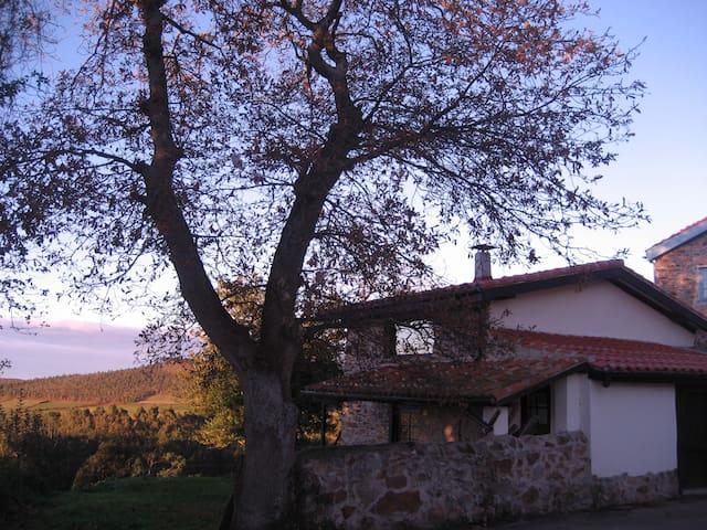 Horreo de Ayalga - Cudillero - Rumah