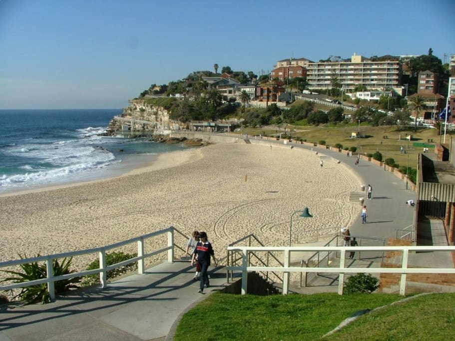 Just 700m walk to Bronte beach via tranquil gully walk. Much loved swim, picnic and playground spots with wonderful cafes and on the walking path to Bondi or Coogee.