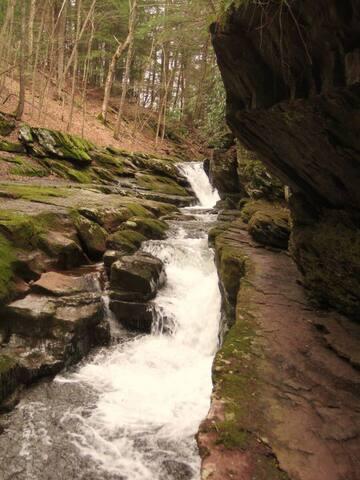 Explore geologic time at Van Campens Glenn in the Delaware Water Gap National Recreation Area