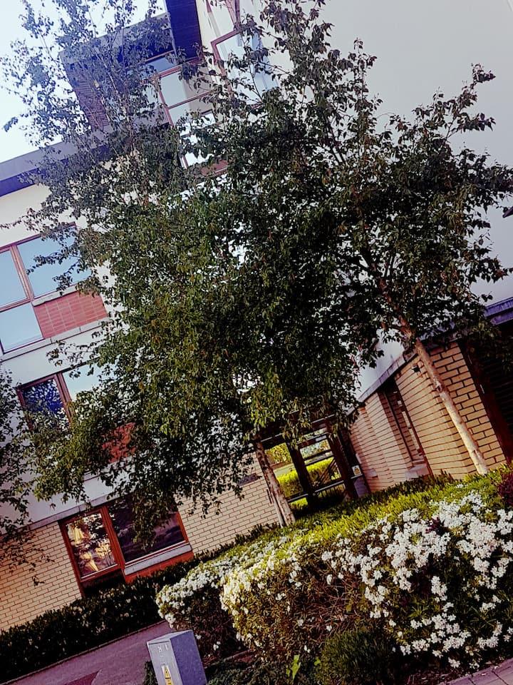 Apartment 15 Room 1 Shanowen Square