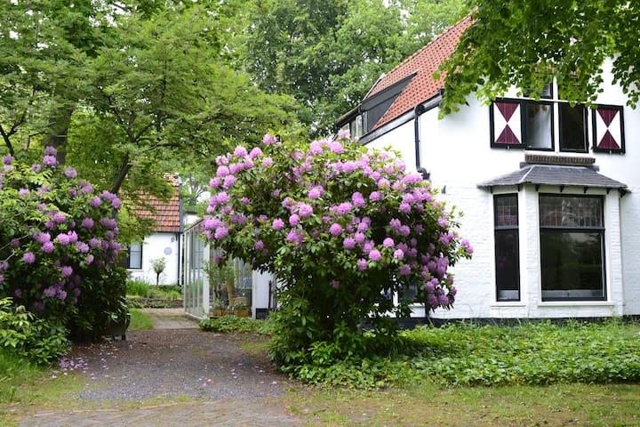 Constantia - Bergen - Villa