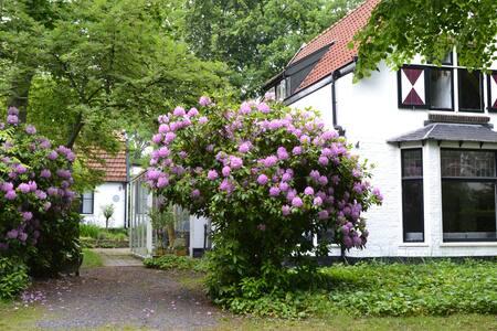 Constantia, heerlijk vakantie huis - Bergen - Villa