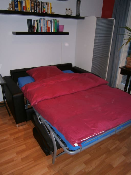 Pullout bed.