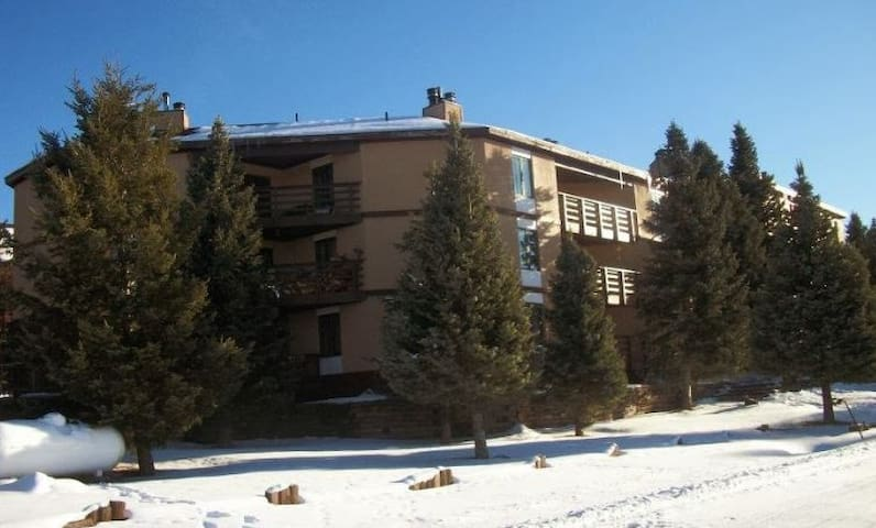 Angel Fire New Mexico Ski Condo - Angel Fire - Appartement