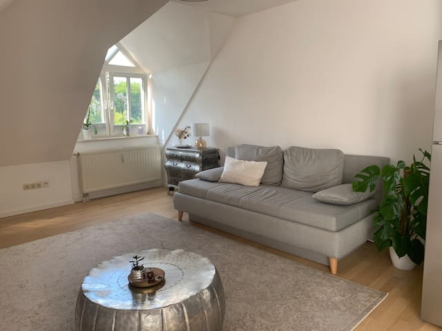 Lovely Loft Apartment - Women Only