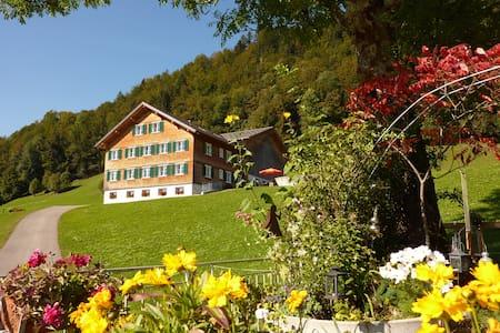 Geräumige südseitige Ferienwohnung - Bolgenach